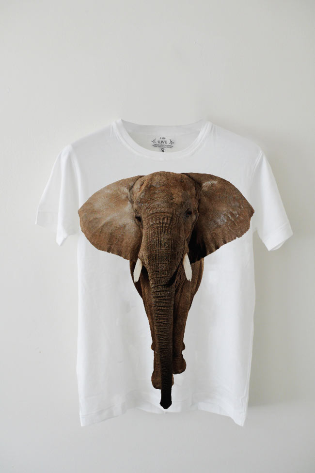 EDUN Elephant T shirt white EDUN Collaborates with Ryan McGinley for T Shirt Celebrating the African Elephant