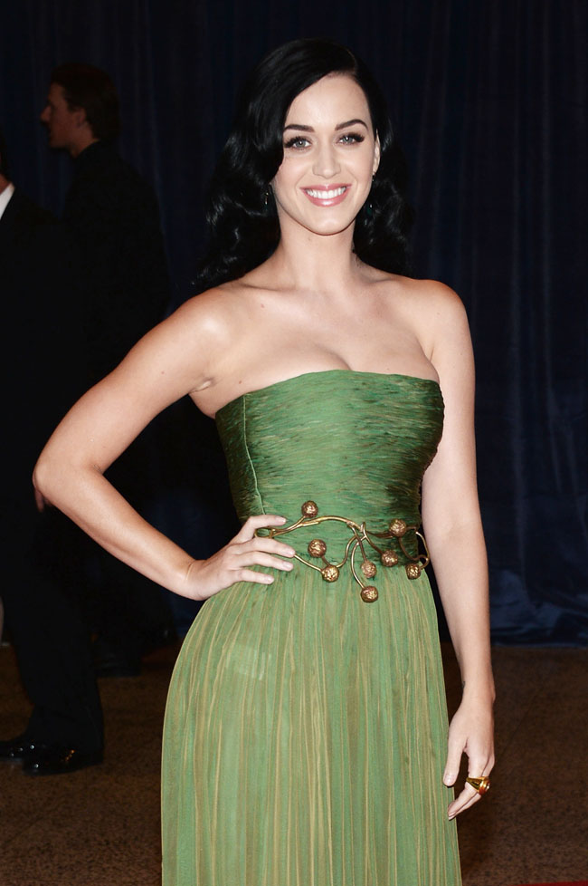 katy perry1 Katy Perry Wears Giambattista Valli at the 2013 White House Correspondents Association Dinner