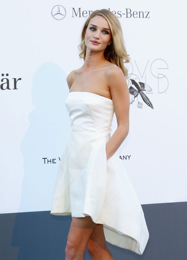 Rosie Huntington Whiteley Demure In Dior At Amfar S 20th