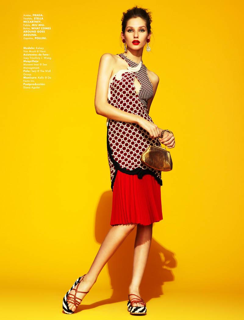 Kelsey Van Mook by Jason Kim for Elle Mexico April 2012
