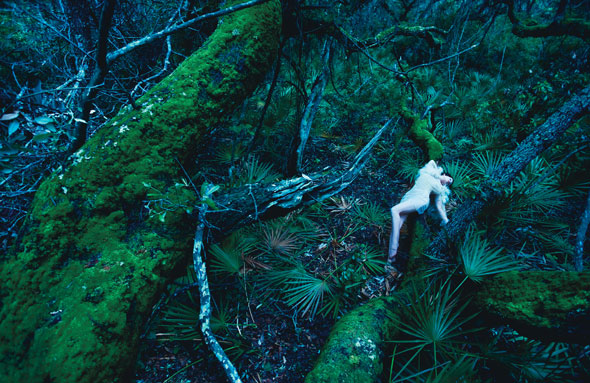 Guinevere van Seenus Finds 'Sanctuary' in W August