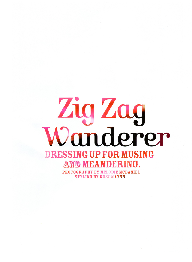 Zig Zag Wanderer